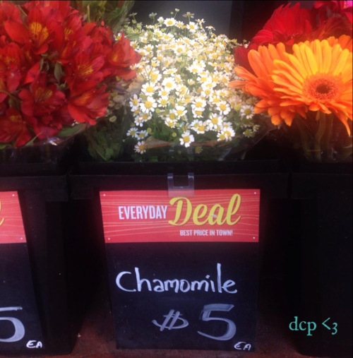 chamomile flowers, whole foods